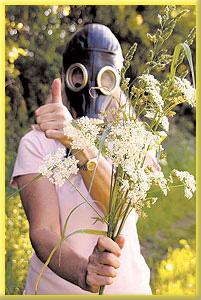 Однако если у Вас аллергия, ситуация резко меняется: зуд...