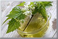 лечение, лекарства, показания, фитотерапия, нетрадиционная медицина